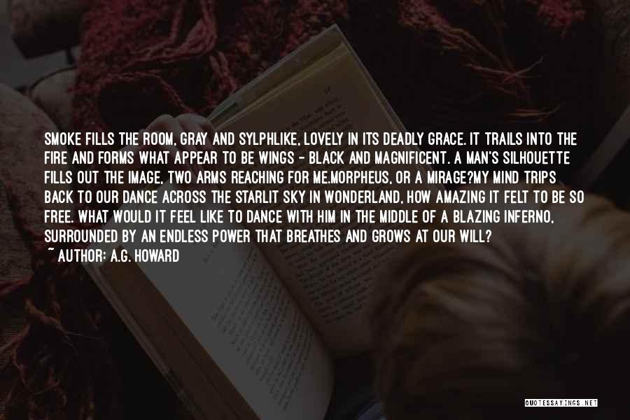 Black Silhouette Quotes By A.G. Howard