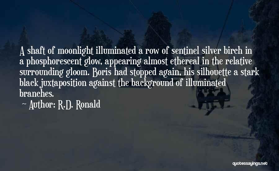 Black Silhouette Quotes By R.D. Ronald