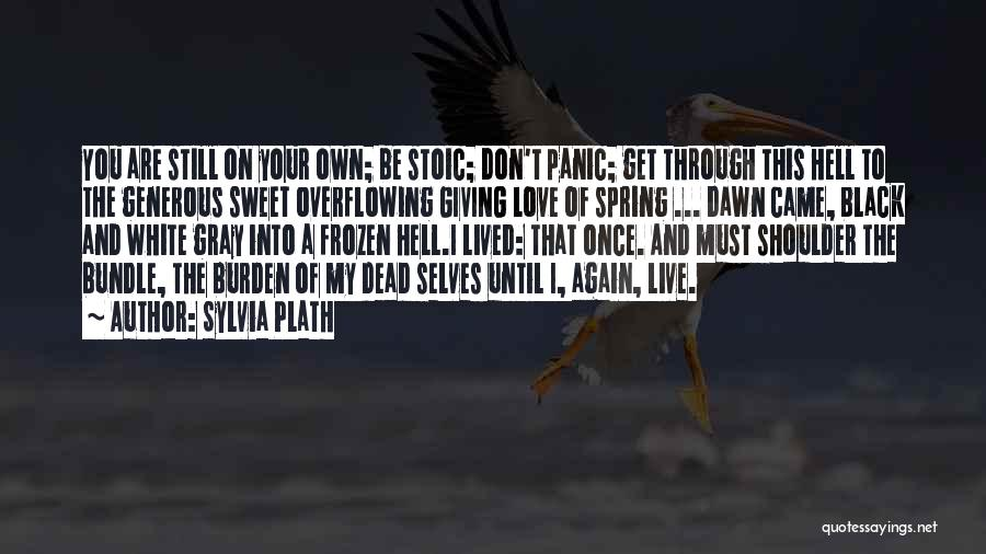 Black White And Gray Quotes By Sylvia Plath