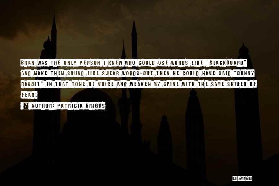 Blackguard Quotes By Patricia Briggs