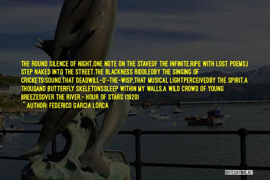 Blackness Quotes By Federico Garcia Lorca