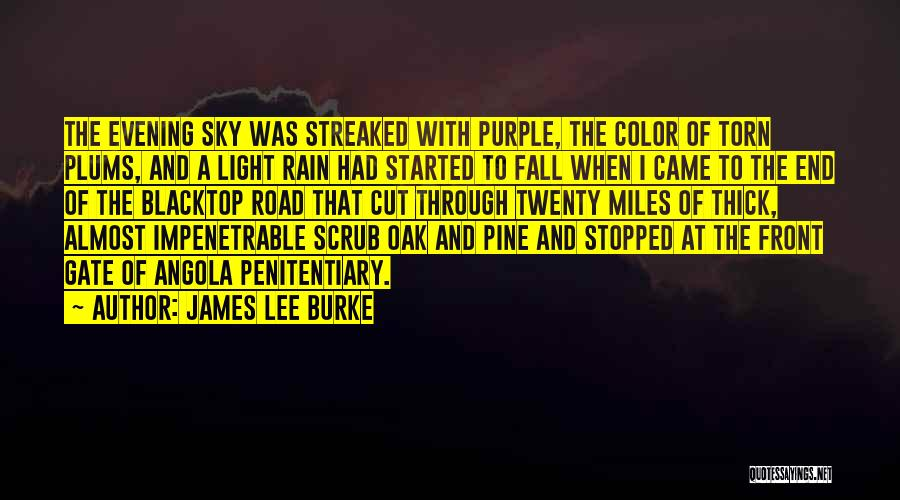 Blacktop Quotes By James Lee Burke