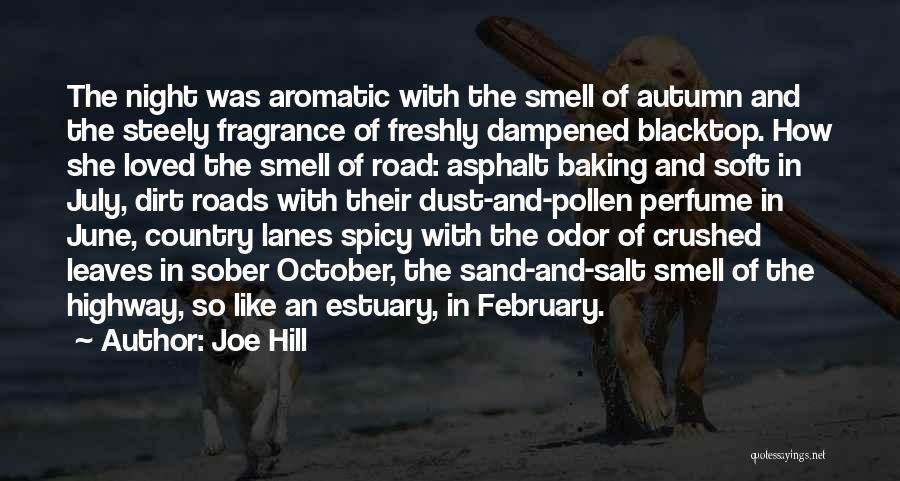 Blacktop Quotes By Joe Hill