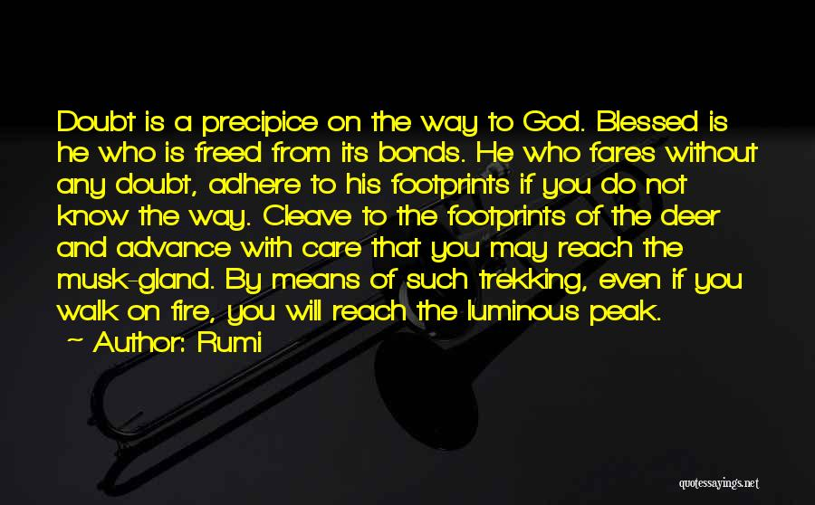 Blessed By God Quotes By Rumi