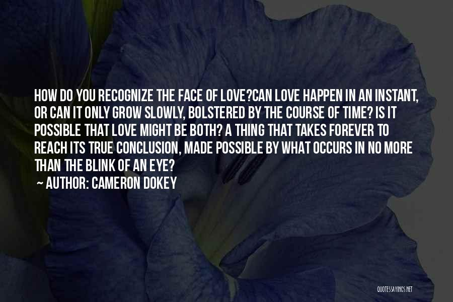 Blink Of An Eye Love Quotes By Cameron Dokey