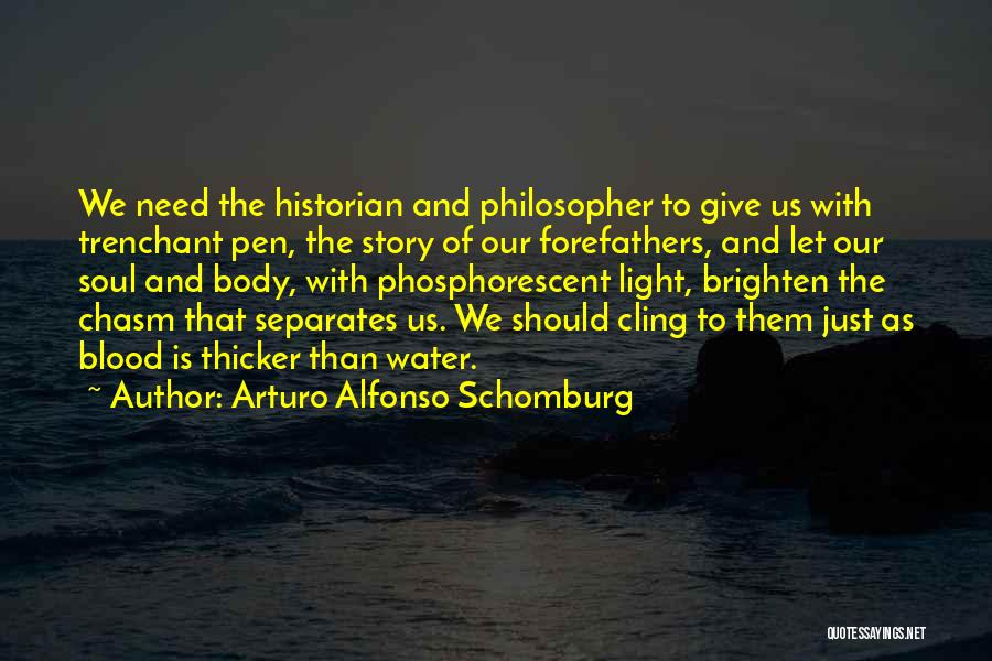 Blood Is Thicker Quotes By Arturo Alfonso Schomburg
