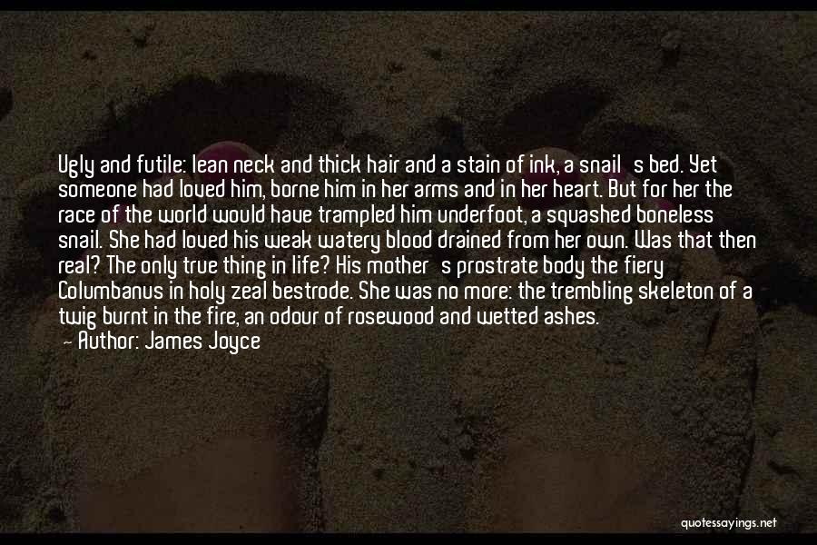 Blood Red Quotes By James Joyce