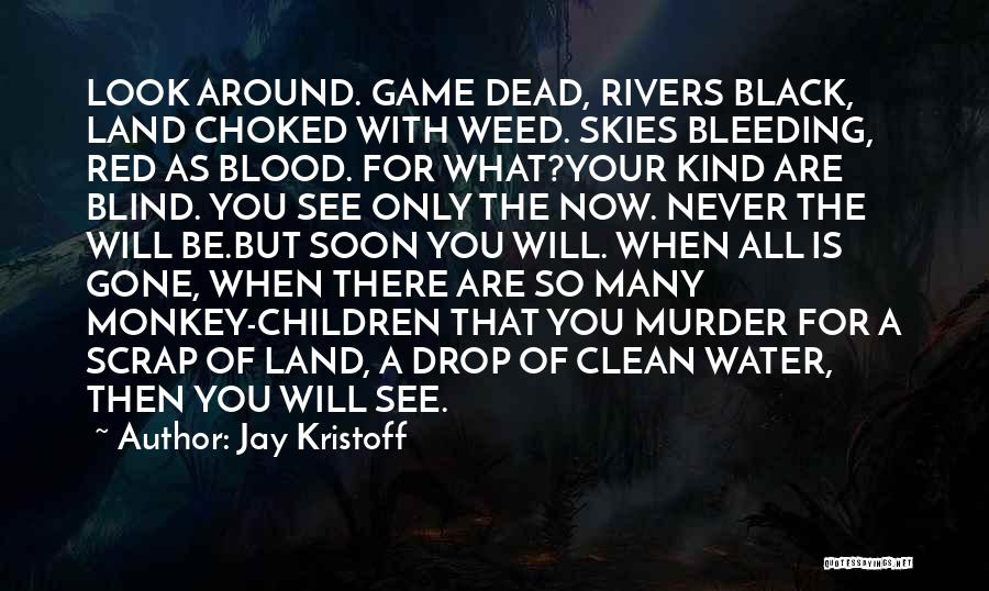 Blood Red Quotes By Jay Kristoff