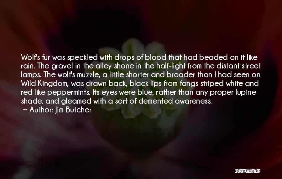 Blood Red Quotes By Jim Butcher