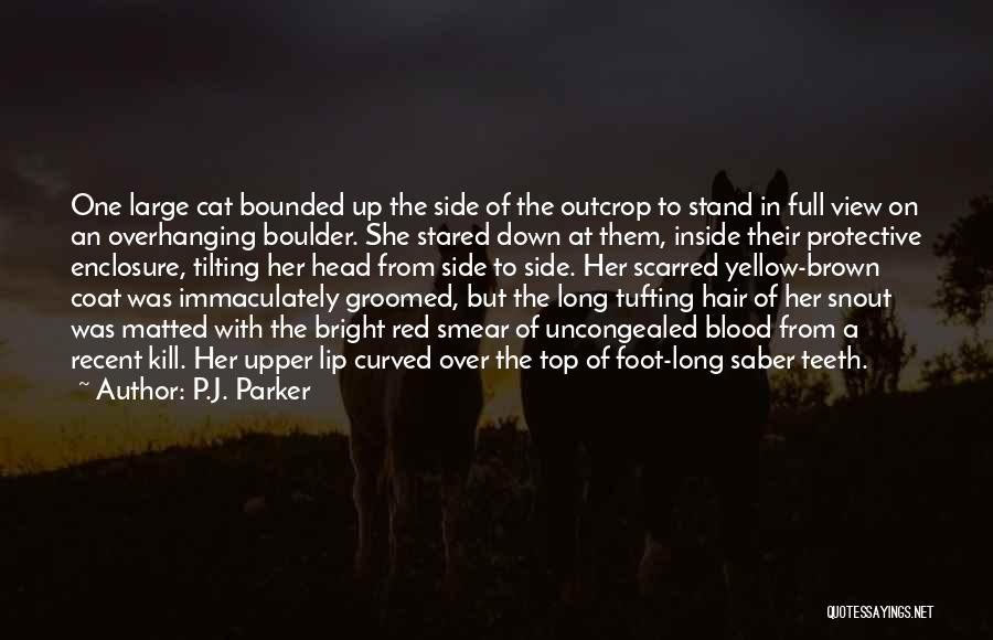 Blood Red Quotes By P.J. Parker