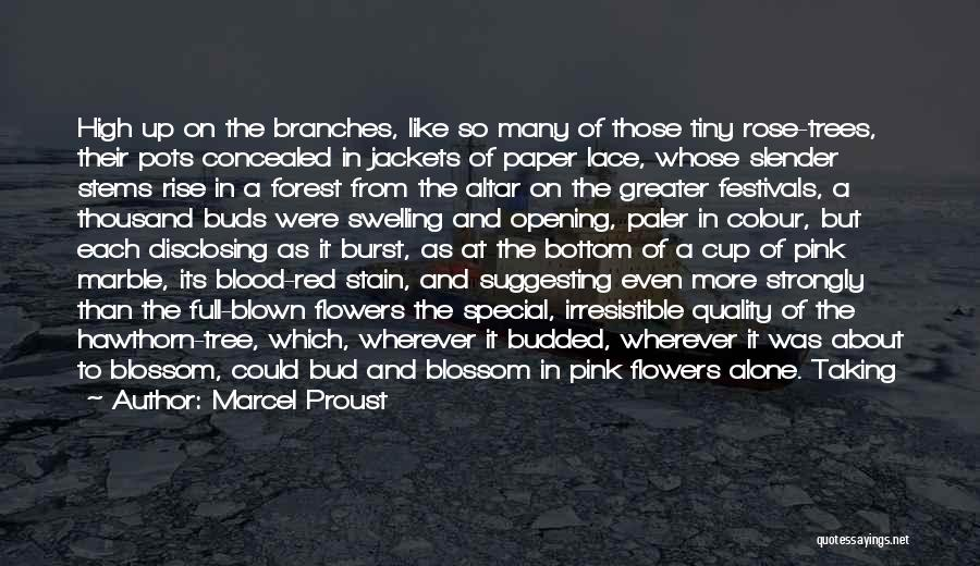 Blood Rose Quotes By Marcel Proust