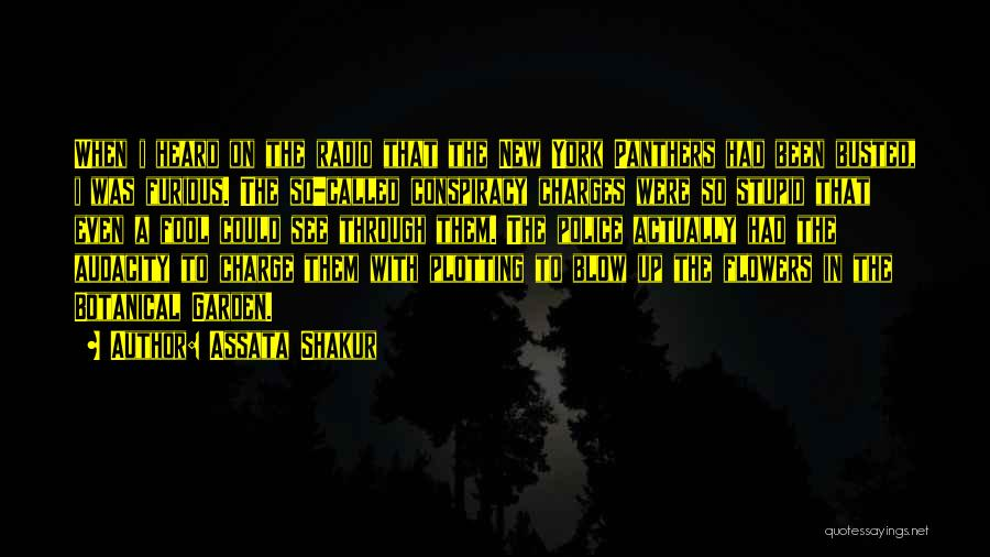 Blow When You Re Up Quotes By Assata Shakur