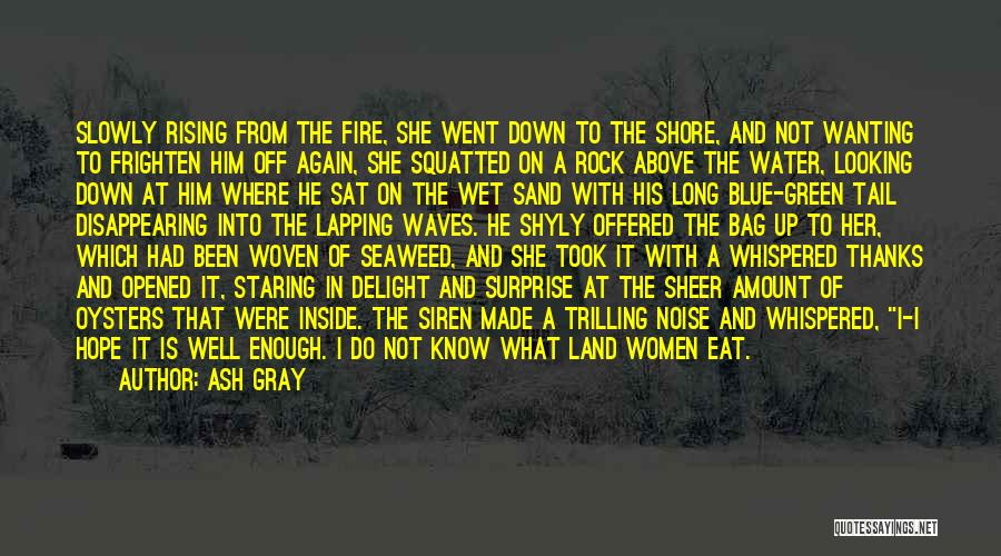 Blue Fire Quotes By Ash Gray