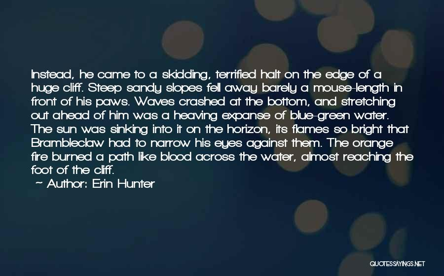 Blue Fire Quotes By Erin Hunter