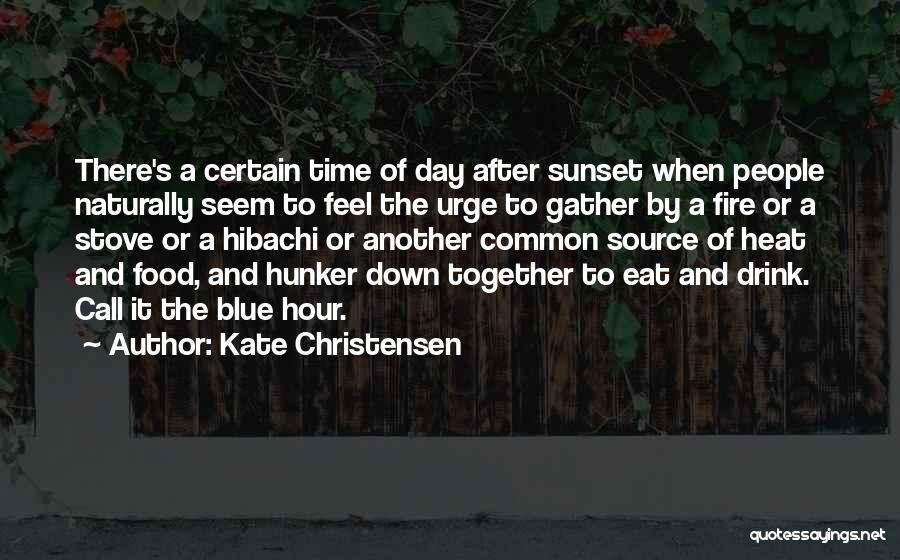 Blue Fire Quotes By Kate Christensen