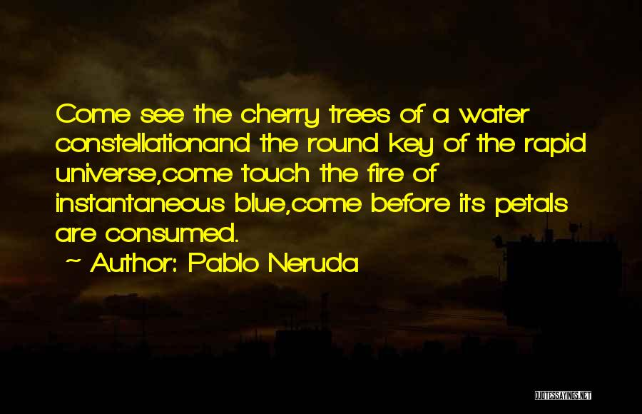 Blue Fire Quotes By Pablo Neruda