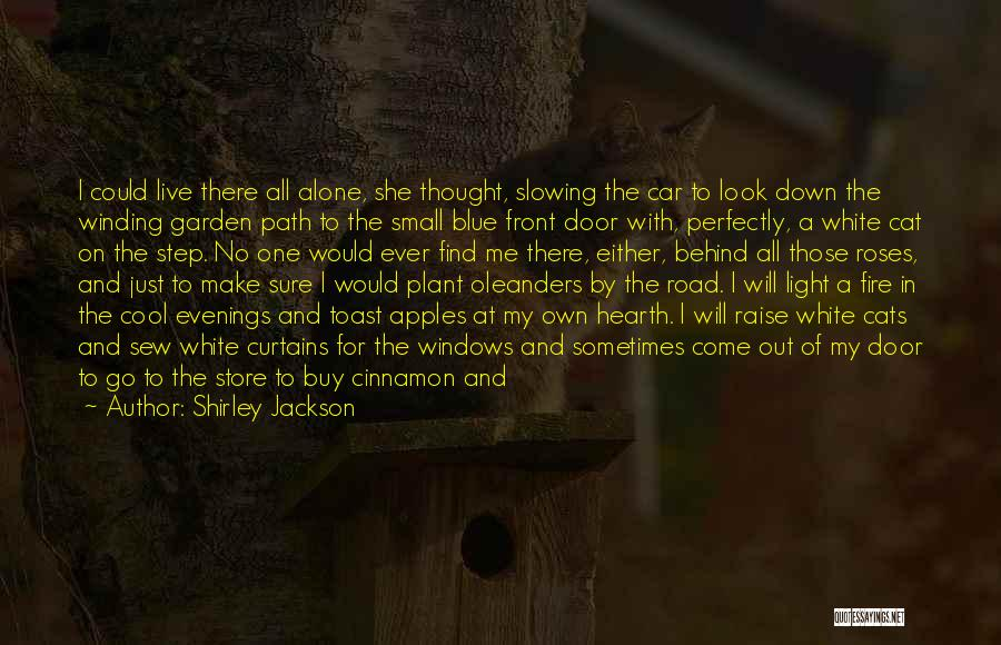 Blue Fire Quotes By Shirley Jackson