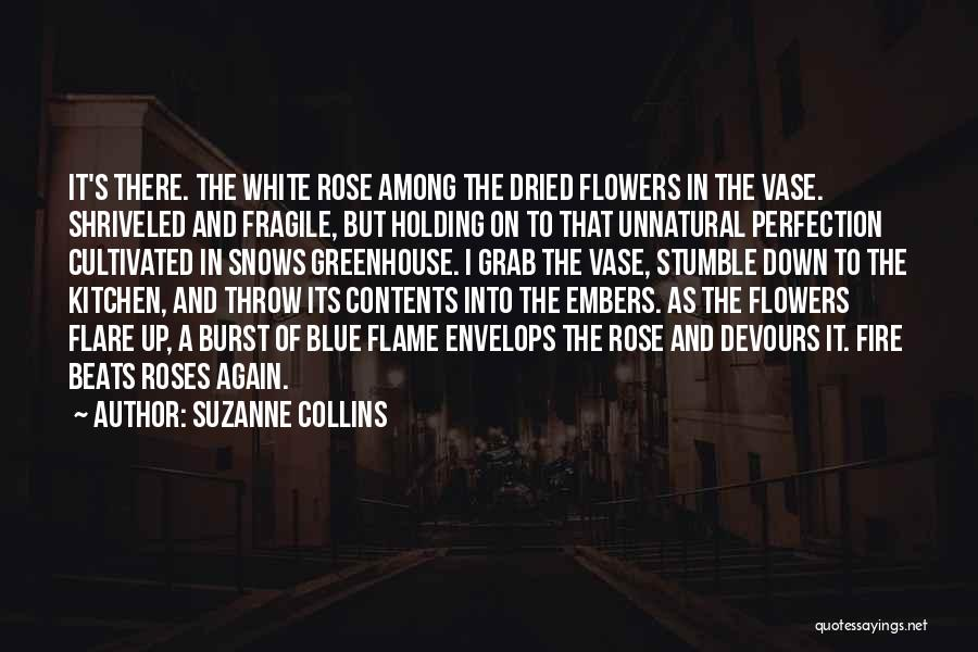 Blue Fire Quotes By Suzanne Collins