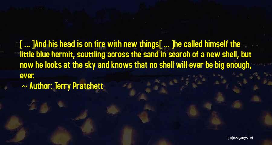 Blue Fire Quotes By Terry Pratchett