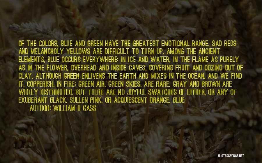 Blue Fire Quotes By William H Gass