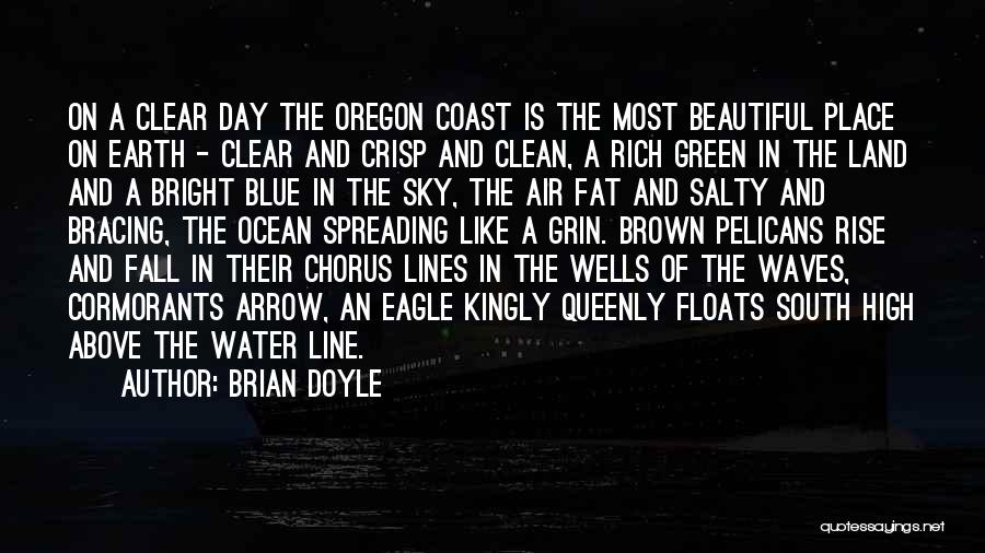 Blue Sky And Ocean Quotes By Brian Doyle