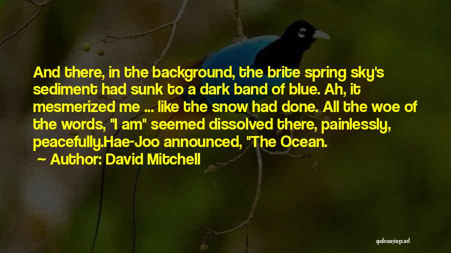Blue Sky And Ocean Quotes By David Mitchell