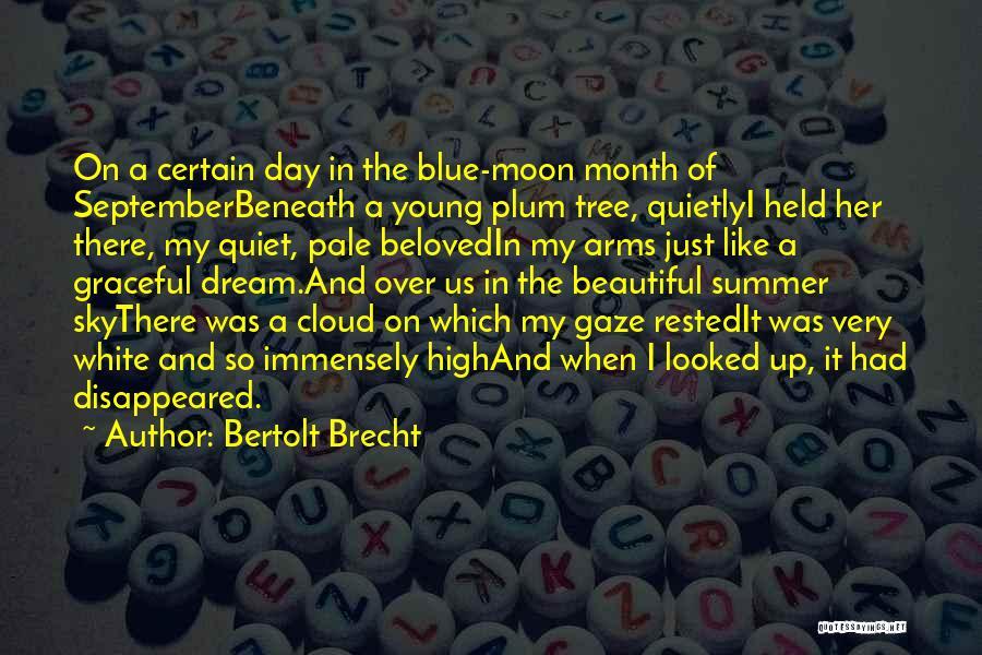 Blue Sky White Cloud Quotes By Bertolt Brecht