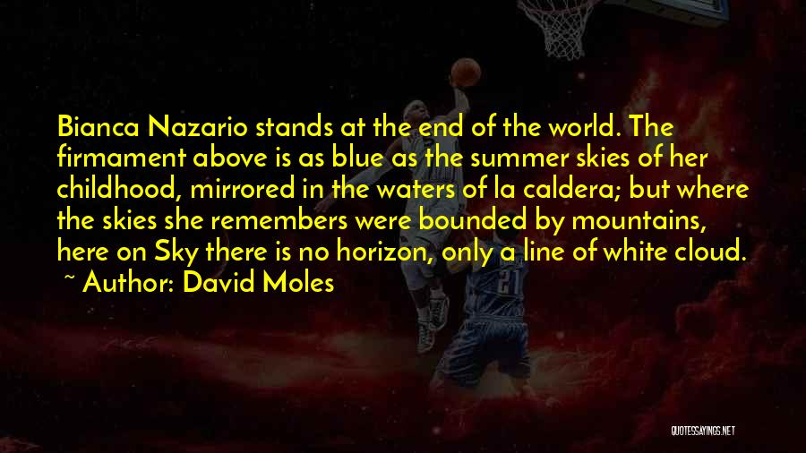 Blue Sky White Cloud Quotes By David Moles