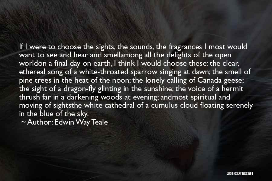 Blue Sky White Cloud Quotes By Edwin Way Teale