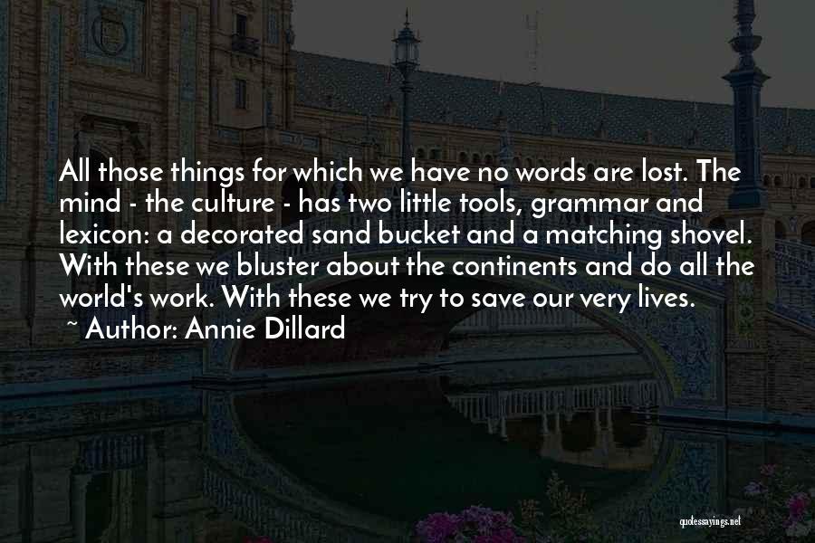 Bluster Quotes By Annie Dillard