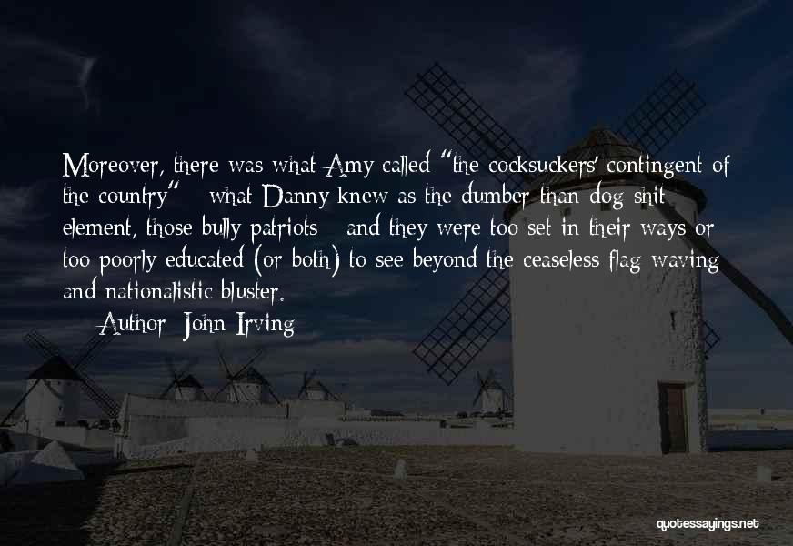 Bluster Quotes By John Irving