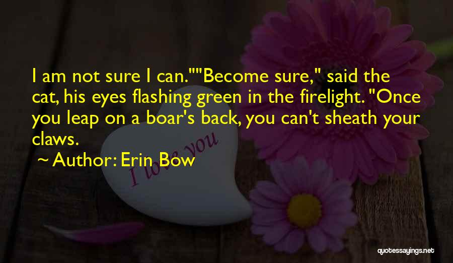 Boar Quotes By Erin Bow