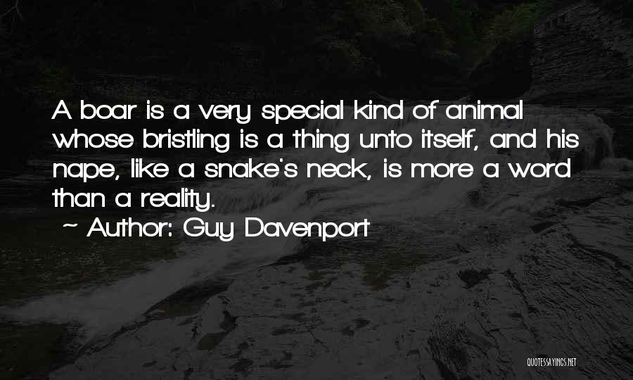 Boar Quotes By Guy Davenport