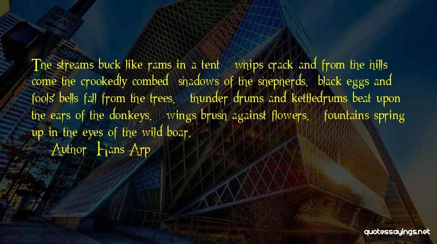 Boar Quotes By Hans Arp
