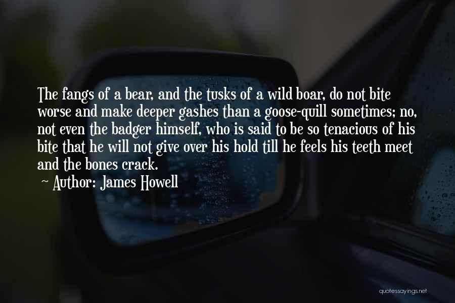 Boar Quotes By James Howell