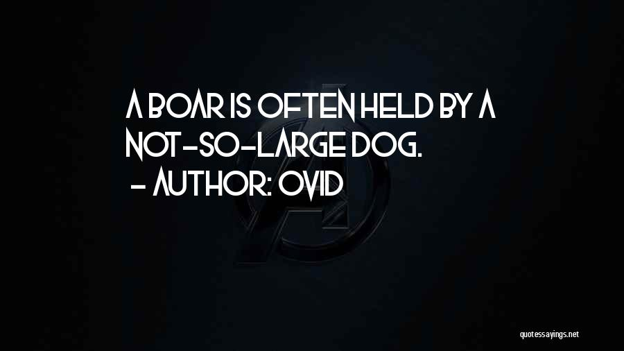Boar Quotes By Ovid