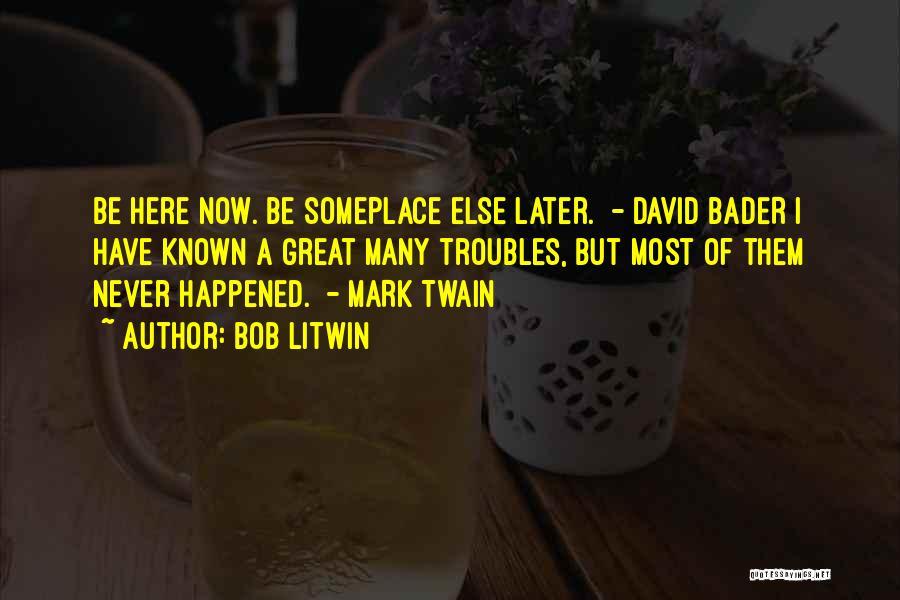 Bob Litwin Quotes 266387