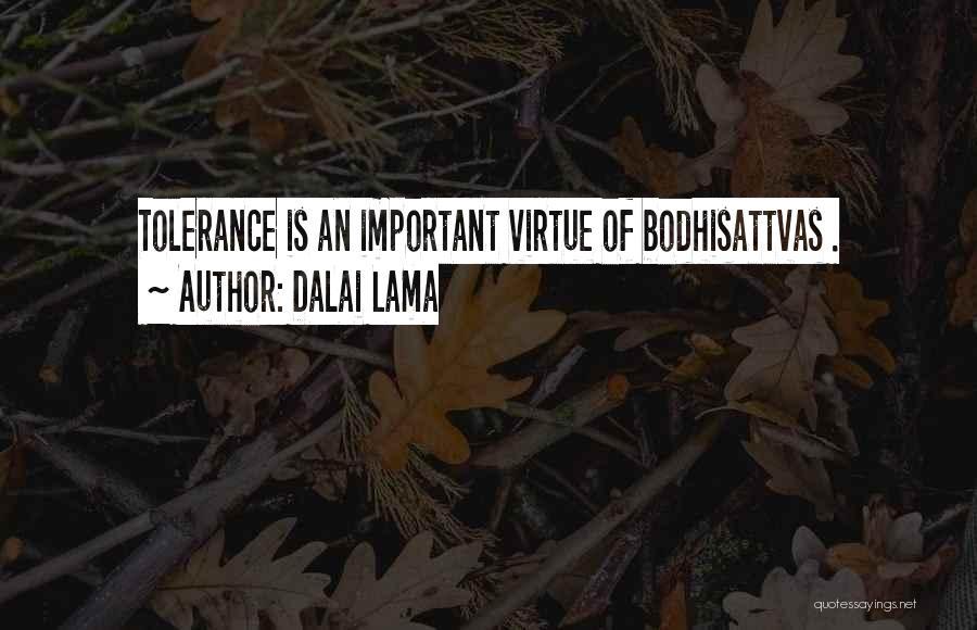 Bodhisattvas Quotes By Dalai Lama