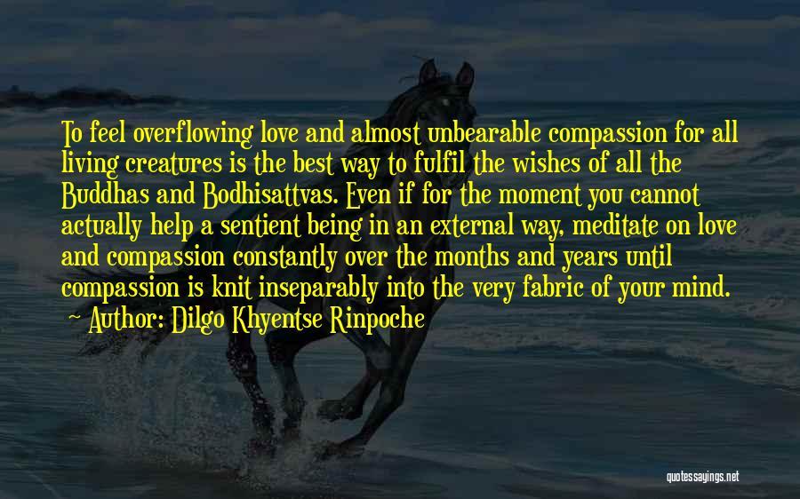 Bodhisattvas Quotes By Dilgo Khyentse Rinpoche