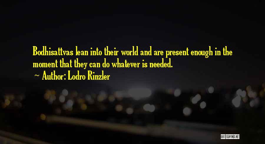Bodhisattvas Quotes By Lodro Rinzler