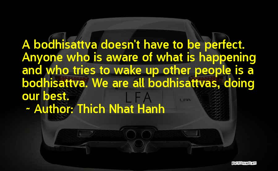 Bodhisattvas Quotes By Thich Nhat Hanh