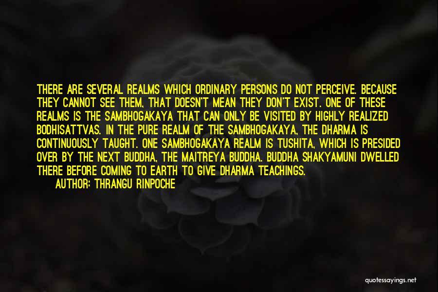 Bodhisattvas Quotes By Thrangu Rinpoche