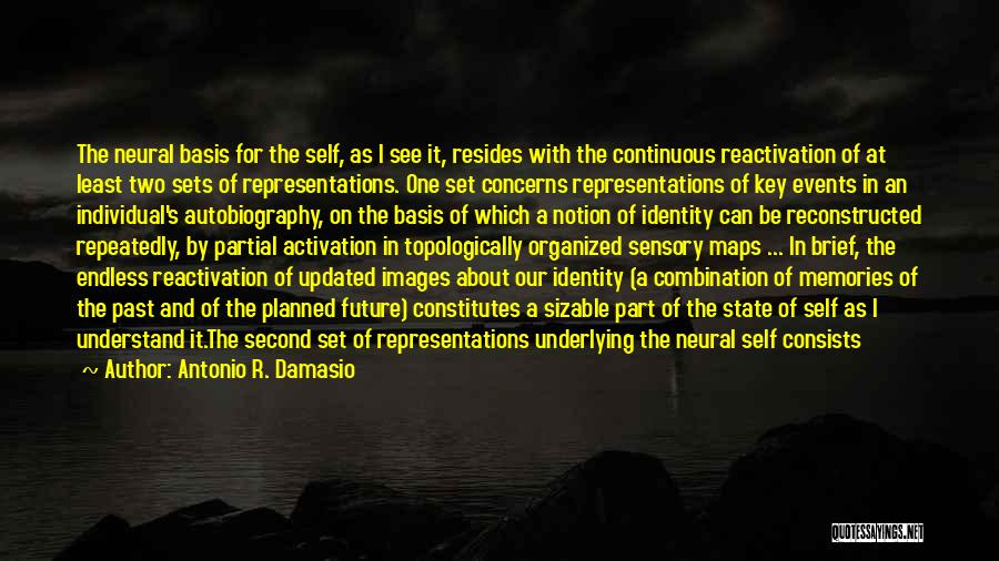 Body And Mind Connection Quotes By Antonio R. Damasio