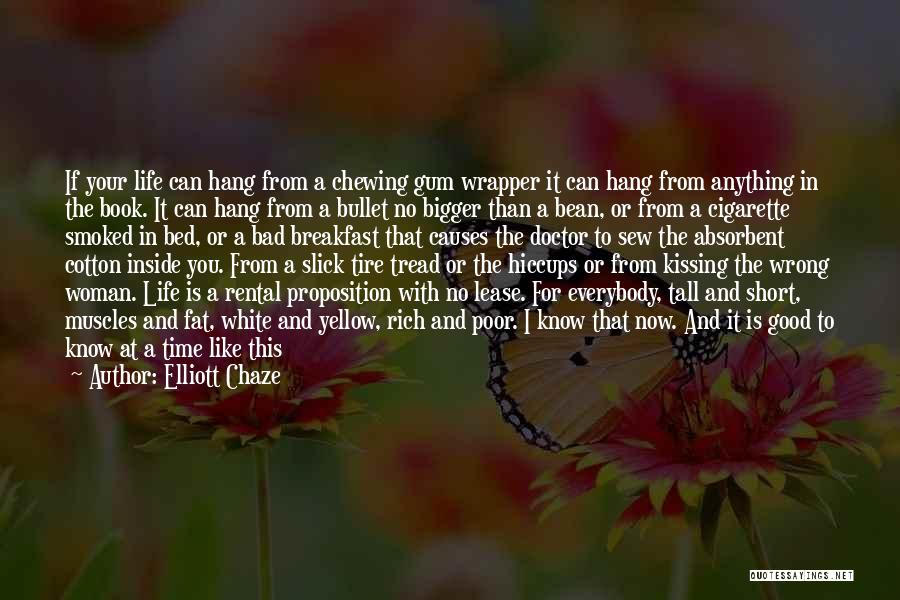 Book And Life Quotes By Elliott Chaze