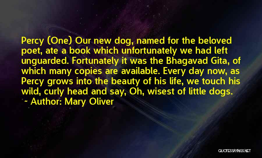 Book And Life Quotes By Mary Oliver