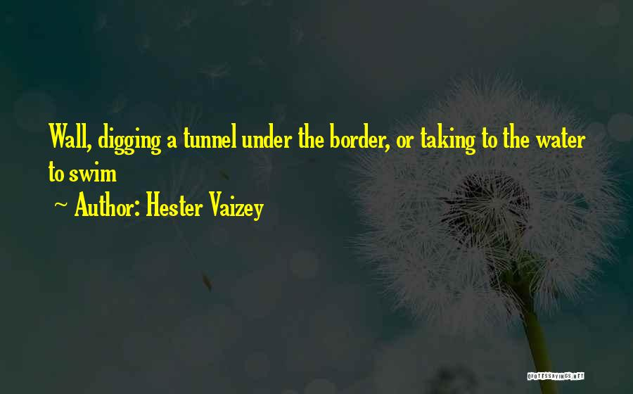 Border Wall Quotes By Hester Vaizey