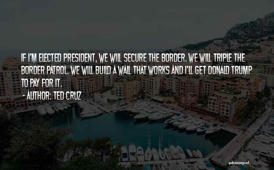 Border Wall Quotes By Ted Cruz