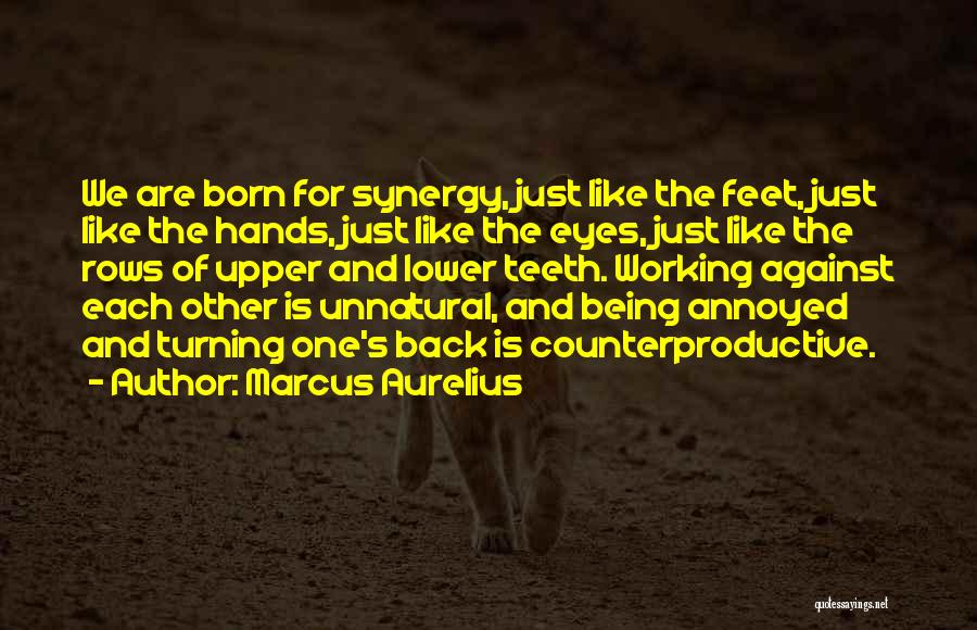 Born For Each Other Quotes By Marcus Aurelius