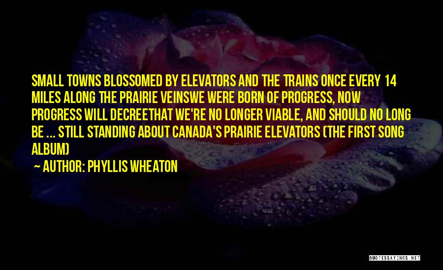 Born Standing Up Quotes By Phyllis Wheaton