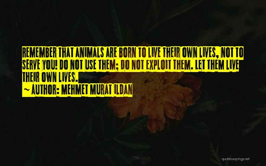 Born To Serve Quotes By Mehmet Murat Ildan